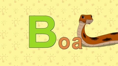 Boa. English ZOO Alphabet - letter B Footage