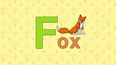 Fox. English ZOO Alphabet - letter F Footage