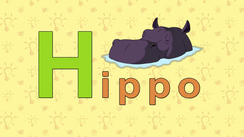 Hippo. English ZOO Alphabet - letter H Footage
