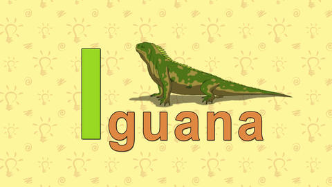 Iguana. English ZOO Alphabet - letter I Live Action