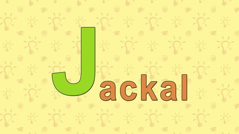 Jackal. English ZOO Alphabet - letter J Footage