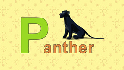 Panther. English ZOO Alphabet - letter P Footage