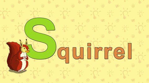 Squirrel. English ZOO Alphabet - letter S Footage