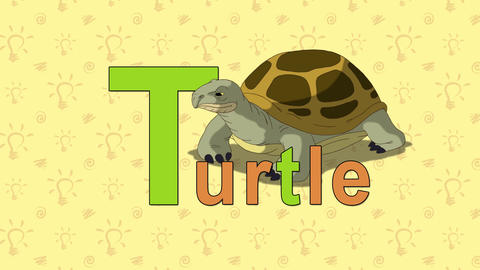 Turtle. English ZOO Alphabet - Letter T stock footage
