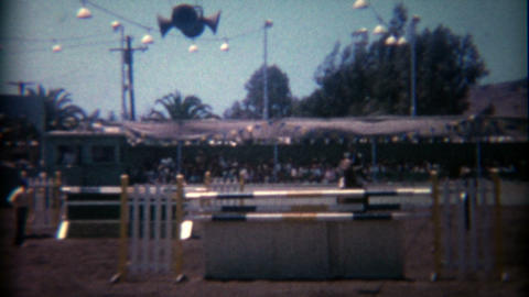 1966: Steeplechase horse jumping over gates and obstacles Footage