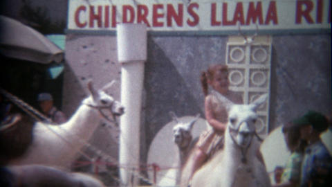 1969: Redhead girl on children's llama ride at amusement park Footage