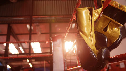 Pair of boxing gloves hanging on boxing ring Live Action