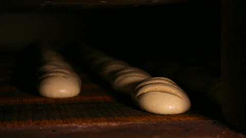 Loaves of raw dough are on the conveyer Footage