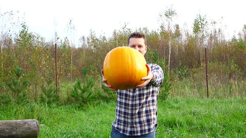 Young adult farmer give large pumpkin, look straight to camera Footage