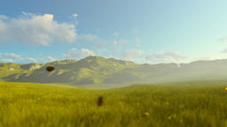 Woman running on green meadow, morning Animation