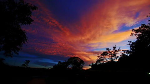 Orange Sunset Clouds in Dark Blue Sky over Tropical Forest Footage