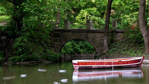 Boat under a bridge in the park timelapse, 4k footage Footage