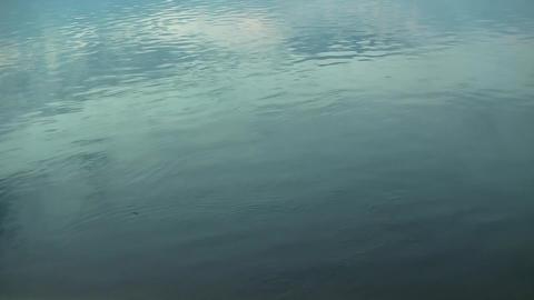 River water 2 min 18 sec- 25fr Footage