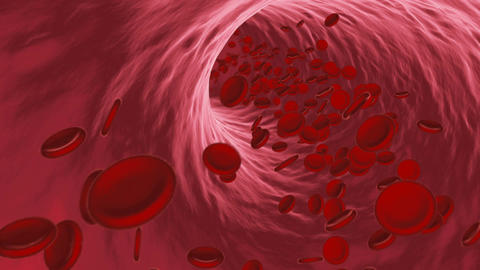 Red blood cells flowing through vein or artery