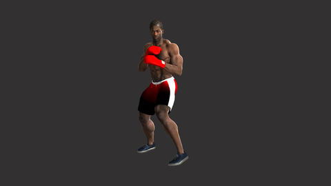 man practicing boxing, animation, Alpha channel Animation