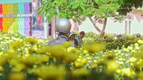 Yellow Chrysanthemums on Street Market against People Footage