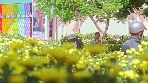 Yellow Chrysanthemums on Street Market against People Stock Video Footage