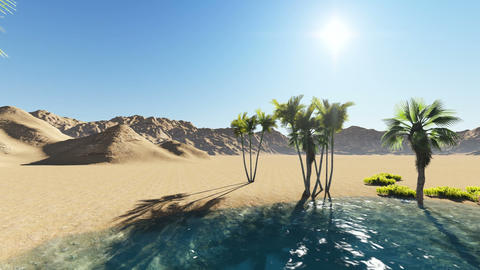 Oasis in the desert made with cartoon effect Animation