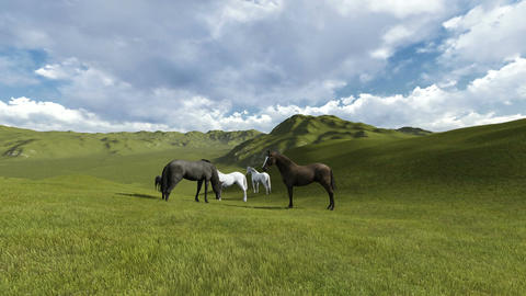 scene of Morning Pasture. Herd of horses grazing in a pasture in the morning lig Animation