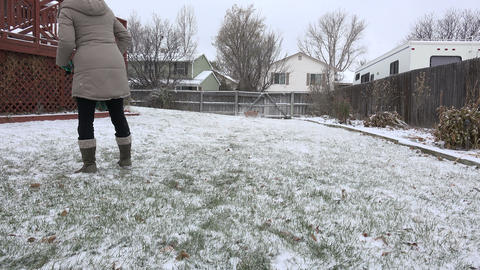 Fashionable women plays fetch with dog while snowing in suburban backyard Footage