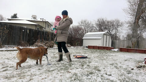 Mom holding baby playing with dog in snowing fenced in residential property Footage