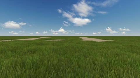 green field and cloudy sky Animation