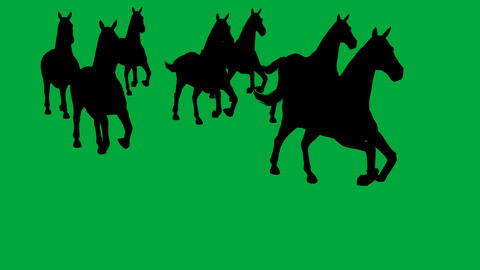 horses galloping - separated on green screen Animation
