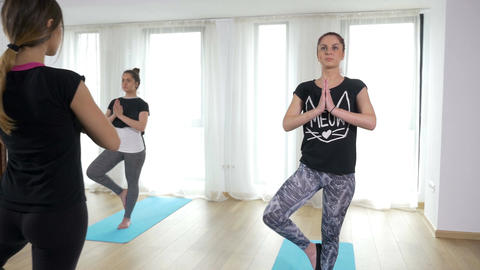 Guided yoga sequence with women doing tree asana Footage