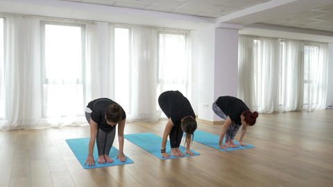 Yoga students doing healthy lifestyle training exercise at the gym Footage
