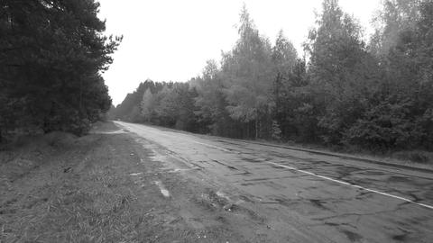 Rainy Road 24 fr monochrome 10 sec Stock Video Footage