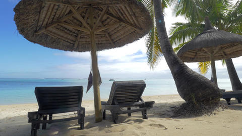 View of empty chaise-longue near native sun umbrella and palm trees against blue Footage
