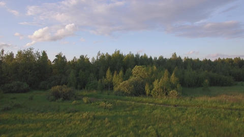 Aerial view of green forest with different trees, grass field against blue sky i Footage