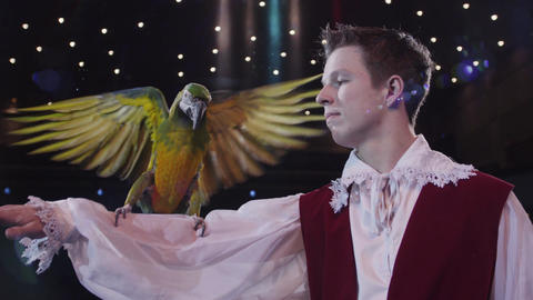 Circus tamer and his macaw ビデオ