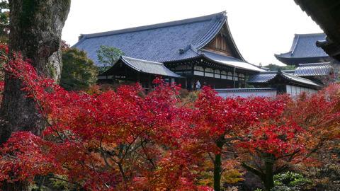 Tofukuji Or Tofuku-ji Temple in Kyoto Japan Asia With Trees Footage