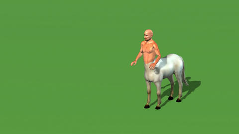 male centaur half horse half man Animation