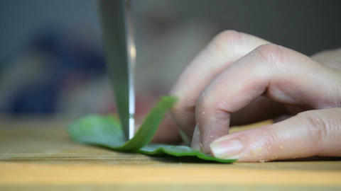 Close-up of professional chef's hand using knife to slice leek leaves for cookin Footage