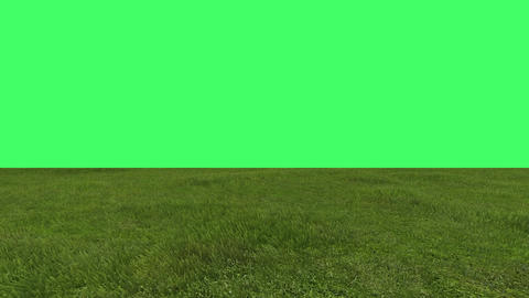 green field on green screen in background Animation