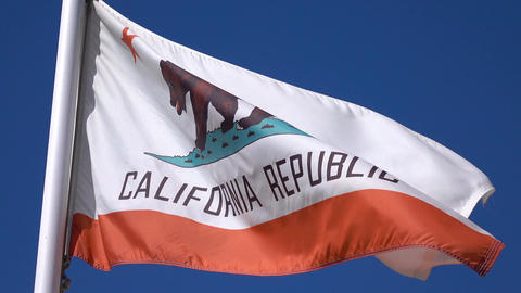 Video of california flag in 4K Live Action