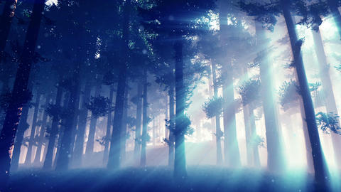Mysterious Fairy Tale Magic Deep Forest with Lightrays and Fireflies 2 Animation