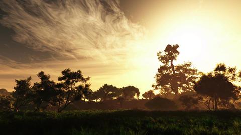 Wonderful Magical Lush Summer Field 2 Animation