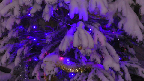 The lights on the Christmas tree on new years Eve Footage