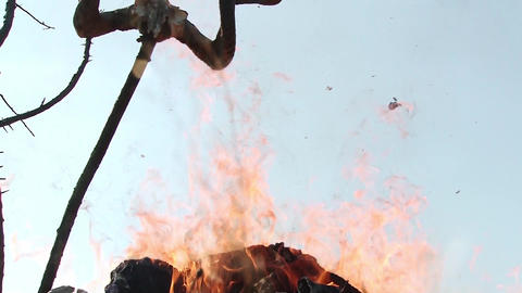 Flames that bribe a sacrifice over a funeral pyre decorated with ram horns 2449a Footage
