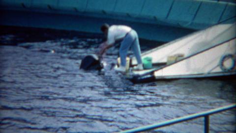 1965: Aquatic park animal trainer feeding walrus fish dolphins jump Footage