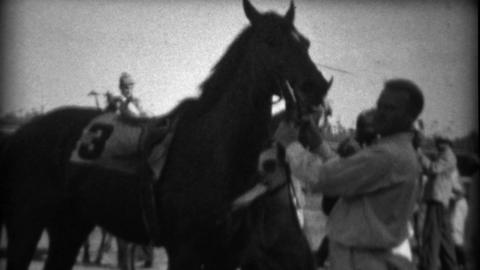1935: Horse race jockey dismounts after the race as handlers take control Footage