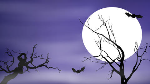 Bats Fly By a Full Moon On Spooky Night Animation