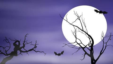 Bats Fly By a Full Moon On Spooky Night Animación