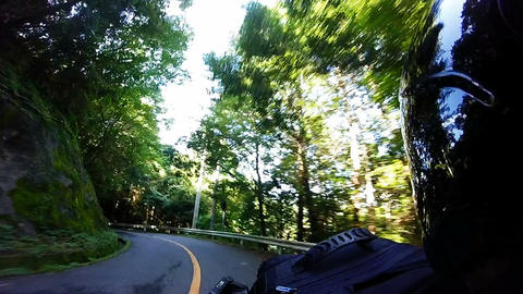 Helmet view. Rider go missing the forest of conifers Footage