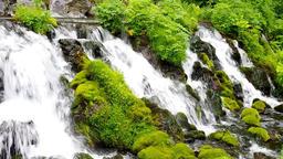 Mt Youtei spring water Hokkaido IMGP2758 Footage