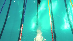Top view female swimmer jumps off starting block dives into pool water HD video Footage