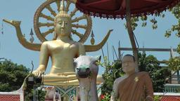 Thailand Ko Samui Island 034 Big Buddha statue and Dalai Lama figure Footage